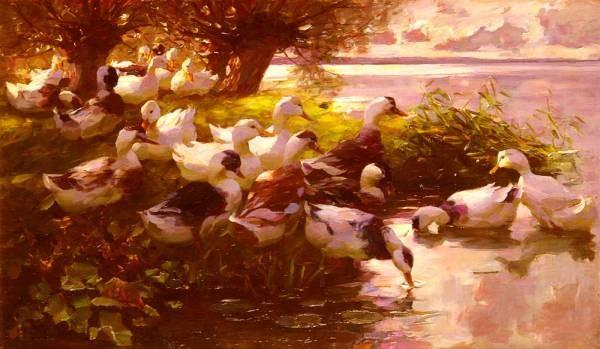 Max Ducks On A Lake